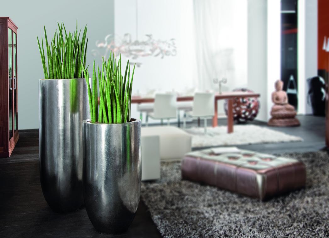 nachrichten | die raumbegrüner | pure - presseportal, Wohnzimmer